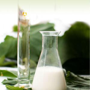 Hidrogenado / solúvel em água / modificado lecitina de soja fabricação