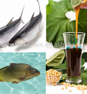 soya lecithin of Fish feed ingredients
