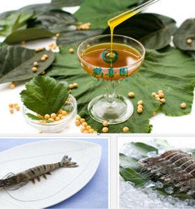 SOYA LECITHIN energy source for aqua feeds