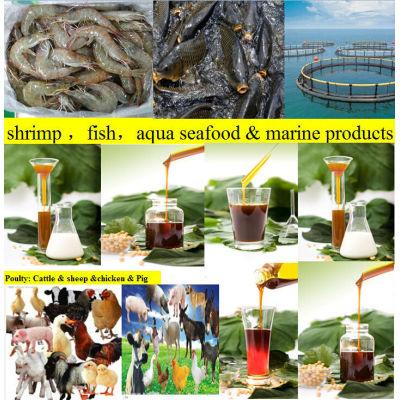 animal feed soya lecithin