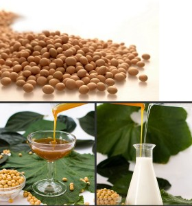 Hydrolyzed Soy Lecithin Non-GMO IP (Water Soluble)
