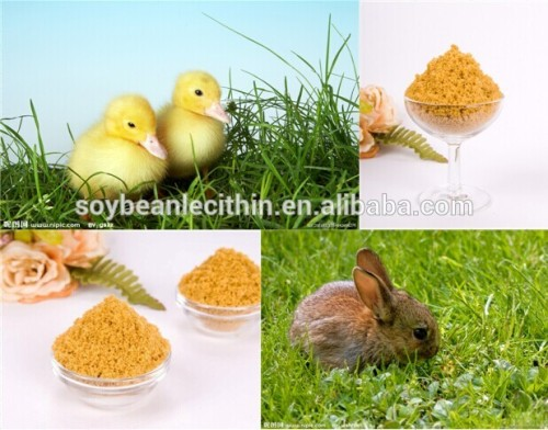 Food Grade Organic Lecithin With High Quality