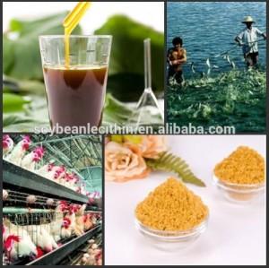 De alta qualidade orgânico puro soja de lecitina óleo em pó