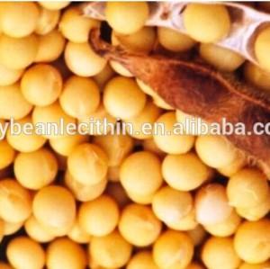 Extrait de soja réduire le cholestérol