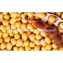 Extrato de soja diminuir o colesterol