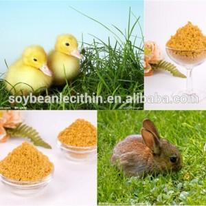 Alimentação de alta pureza de soja lecitina em pó