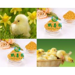 Usine offre de lécithine de soja poudre d'huile avec le prix concurrentiel