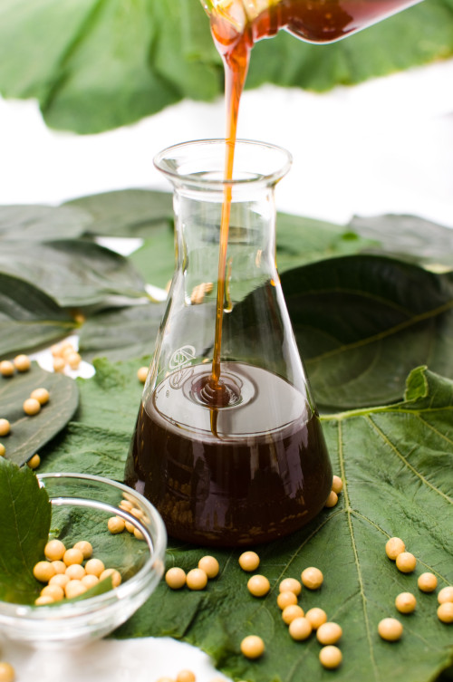 1H Primer Panits emulsifier chemical grade supplement factory liquid soja lecithin