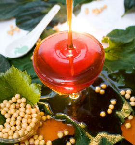 non gmo liquid soybean lecithin