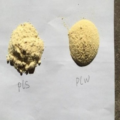Medicinal grade GMO FREE soya lecithin powder manufactures