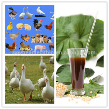 Alimento para pollos ingredientes de lecitina de soja