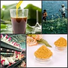 Souble agua instantánea de alimentación suplemento alimenticio líquido lecitina de y polvo manufactuerer