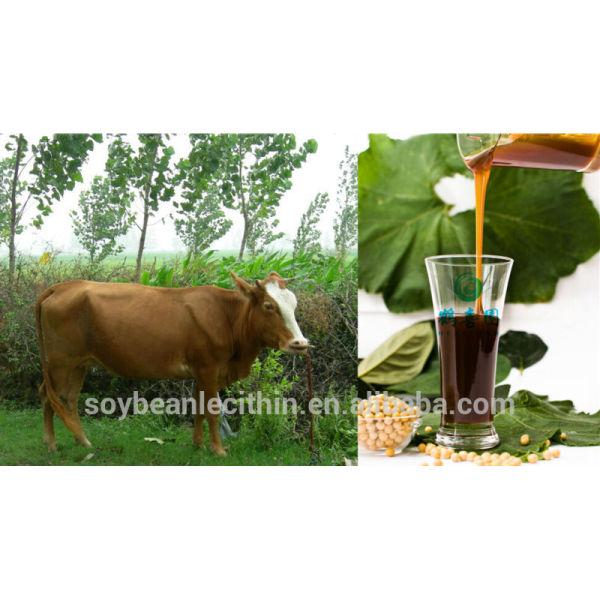 Animal nutricional productos lecitina de