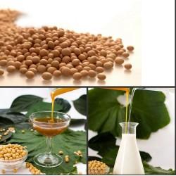 Hidrolisado lecitina de soja não-ogm ip( solúvel em água)