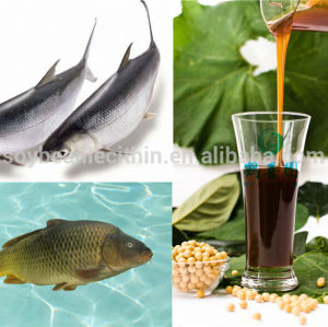 Soja lecitina de alimentos para peixes ingredientes
