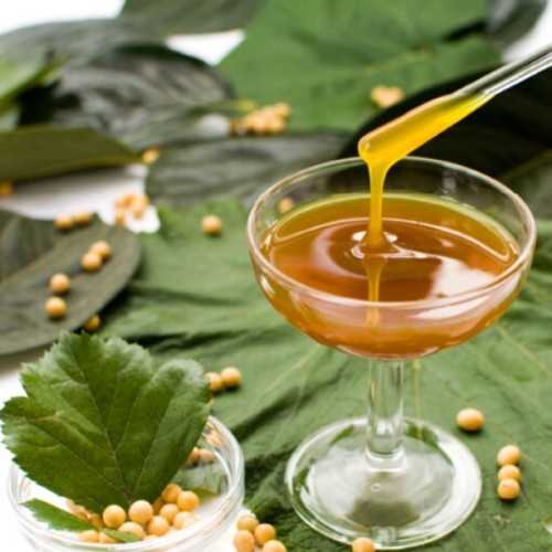 plants to manufacture lecithin