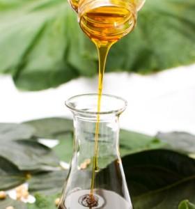 Soybean lecithin phospholipid