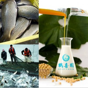 poultry feed additive soybean lecithin