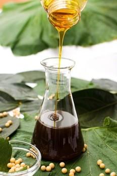 Manufacturer of Soya bean lecithin Powder for medicine