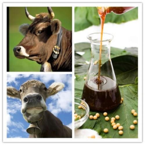 soy lecithin feed additive
