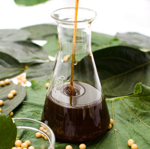 Soybean Lecithin Liquid