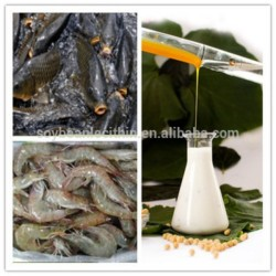 soya been lecithin for shrimp feed