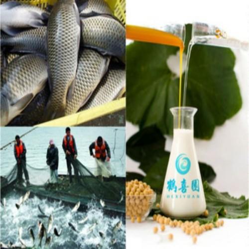 liquid wetting agent soya lecithin