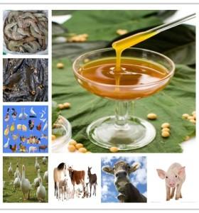 3sp discolored non gmo soybean extract bulk agents fluid soja soy lecithin3sp discolored non gmo soybean extract bulk agents fluid soja soy lecithin