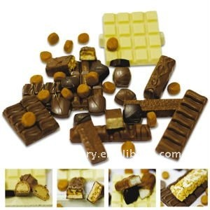 Chocolate moulding plant