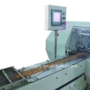DZJ-2000 Stick packaging machine