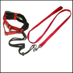 宠物牵引绳胸背带项圈三件套遛狗带狗链子
