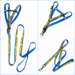 Fashion heat transfer pet tracer straps for dog walking belt