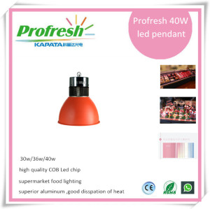 CE&ROHS passed 40W high quality brightest high Ra led pendant