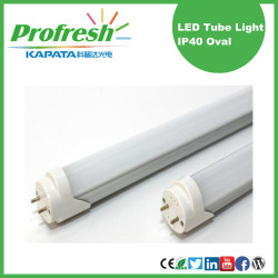 customized unique Ra>80 LED 1200mm T8 Tubes with CE RoHS
