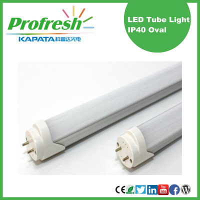 tubos únicos personalizados Ra> 80 LED 1200mm T8 con CE RoHS
