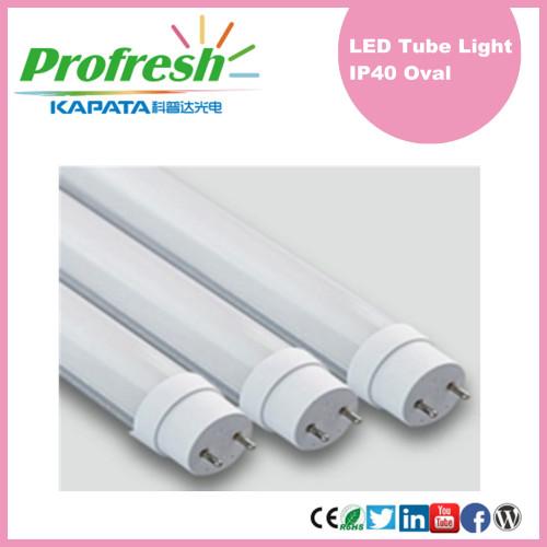 Tubos ahorros de energía Ra> 80 600m m LED T8 con el CE RoHS para la iluminación de la exhibición del supermercado