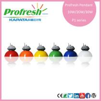 10w hot selling longlife profresh pendant light