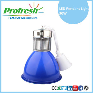 30W LED pendant light modern pendant light for supermarket lighting with customized lighting colors and CE & ROHS approved