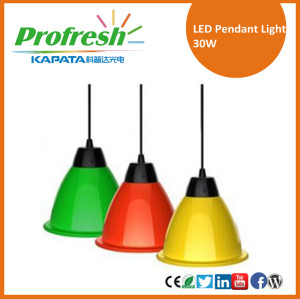 LED high bay lighting 30W led pendant light supermarket pendant lighting