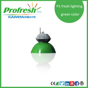 30w CoB supermarket pendant light