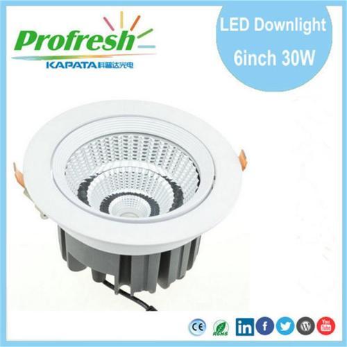 La luz de techo Profresh de 30 vatios de 6 pulgadas para la tienda al por menor llevó el downlight