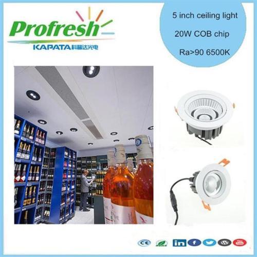 5 pulgadas 20 vatios COB chip Profresh luz de techo para vinos o lácteos iluminación led downlight