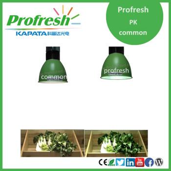 Profresh 40w led pendant, hanging fresh food pendant lighting,2015 new led supermarket light