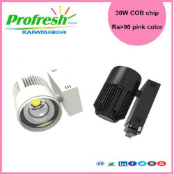 30W COB chip track light pink color for meat display lighting fresh meat store supermarket