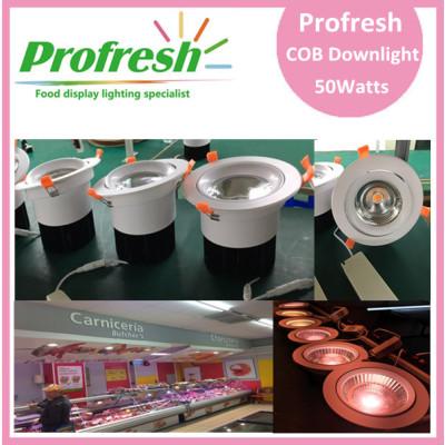 Azotea de techo a medida Profresh 50Watts CRI> 90 para iluminación de alimentos