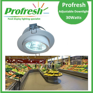 Profresh adjustable ceiling down light 30Watts CRI>90 for food lighting