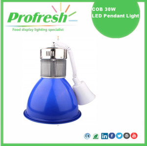 30Watts hot selling profresh food display pendant light