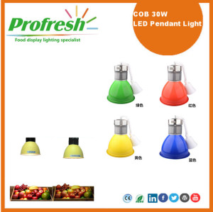 LED high bay lighting 30Watts COB pendant light supermarket meat display