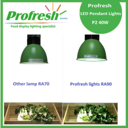 COB chips 5000K 40w pendant light , LED Low bay 40w hanging light