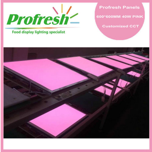 Profresh 40W pink led panel light for food application